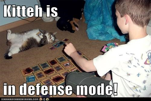 card game,cards,cat,defense,defense mode,mode,TCG,Yu Gi Oh