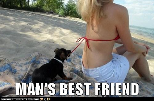 best of the week bikini dogs Hall of Fame mans-best-friend naughty puppy sexy string - 6048492032