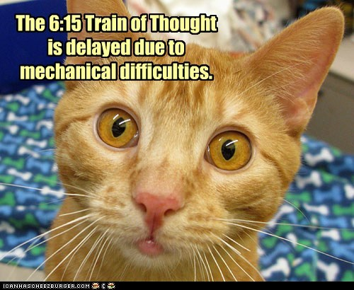 blank brain cat dumb Hall of Fame lolcat slow stupid train - 6048631040