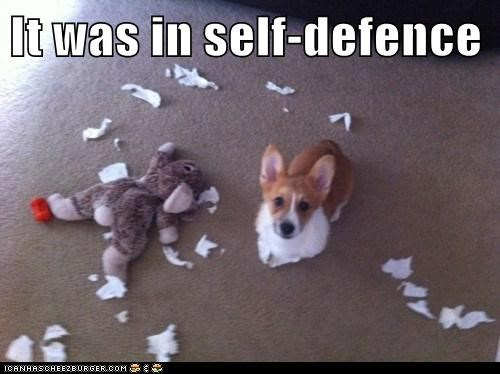 It was in self-defence