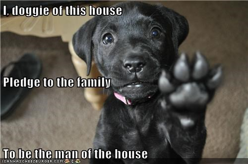 I, doggie of this house Pledge to the family To be the man of the house