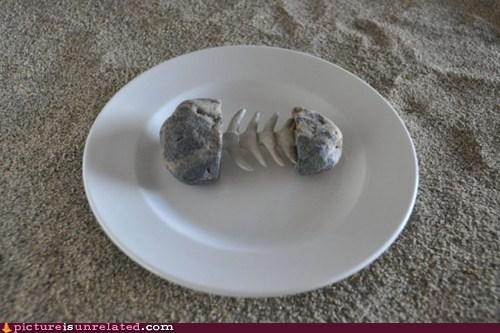 stonefish plates dinner plates - 6049367296