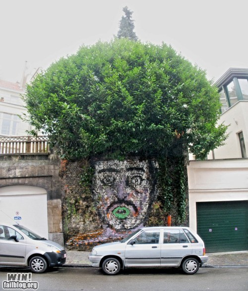afro,graffiti,hacked irl,shrubbery,Street Art,tree