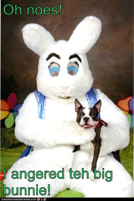 Oh noes!  I angered teh big bunnie!