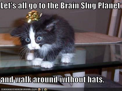 Cheezburger Image 605221120