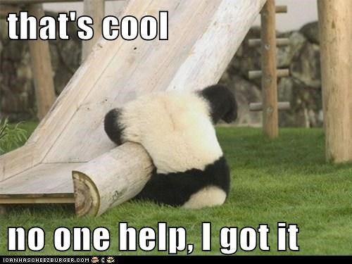 cool fall got it help panda passive aggressive slide stuck