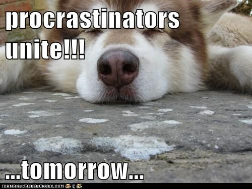 procrastinators unite!!! ...tomorrow...