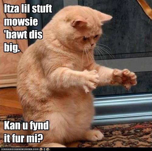 Itza lil stuft mowsie 'bawt dis big. Kan u fynd it fur mi?