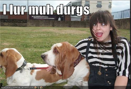 derp dogs goggie