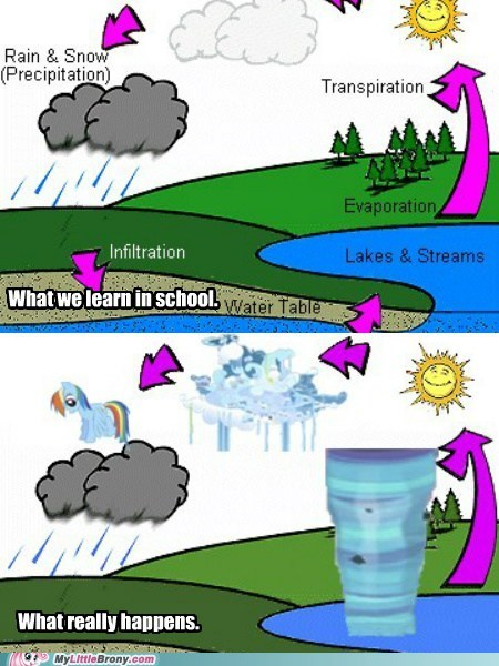 graphscharts pegasus rain the water cycle weather - 6055455232
