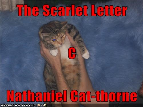 The Scarlet Letter C Nathaniel Cat Thorne Lolcats Lol Cat