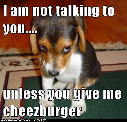 Cheezburger Image 6056760576