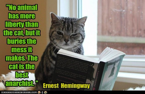 """""""No animal has more liberty than the cat, but it buries the mess it makes. The cat is the best anarchist. """" Ernest Hemingway"""