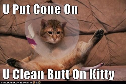 U Put Cone On U Clean Butt On Kitty
