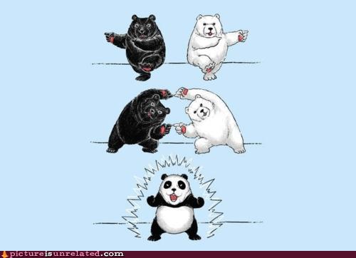 bears best of week fusion panda wtf - 6057870336