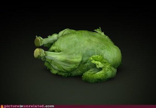 best of week chicken lettuce meat vegetarian wtf - 6057881600