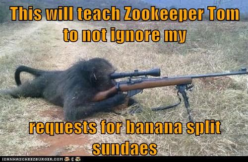 ice cream,ignored,monkey,revenge,sniper rifle,zookeeper