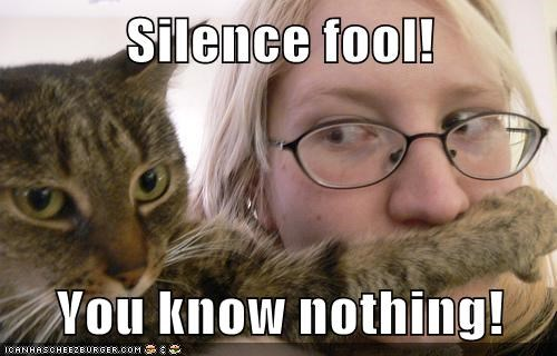 cat face fool lolcat mouth paw shut up silence - 6058501376