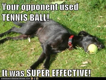Your opponent used TENNIS BALL! It was SUPER EFFECTIVE!