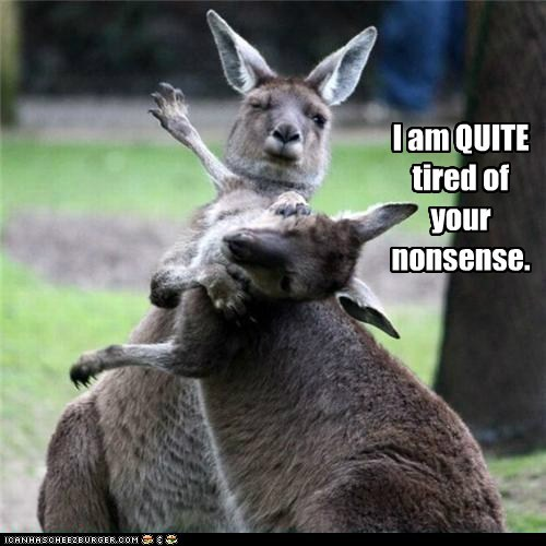 australian,fighting,good day,i said,kangaroos,nonsense,quite,slap,slapping,tired
