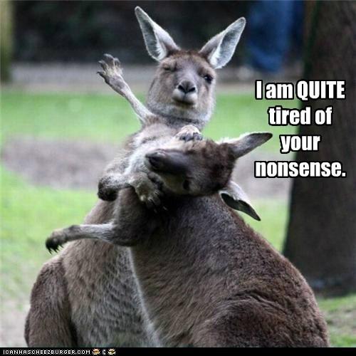 australian fighting good day kangaroos nonsense quite slap tired - 6058527744