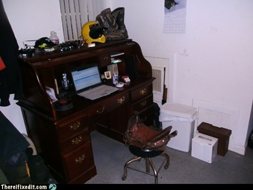 desk,desk chair,giddyup,horse,office chair,saddle
