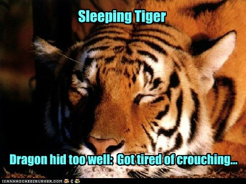 crouching tiger hidden dragon give up sleeping tiger tired