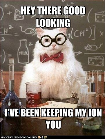 Chemistry,chemistry cat,ion,pick-up line,pun