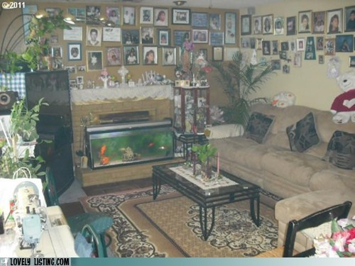 aquarium,haze,humid,living room