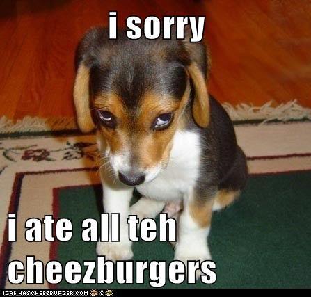 Cheezburger Image 6060980224