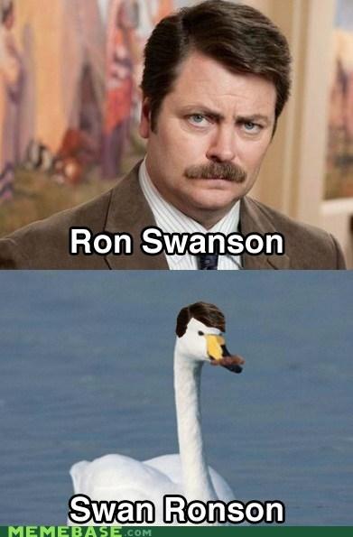 Memes parks and rec puns ron swanson swan - 6061287936