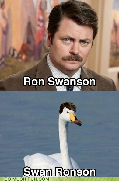 Hall of Fame letters literalism name Nick Offerman parks and recreation ron swanson swan switch - 6061383936