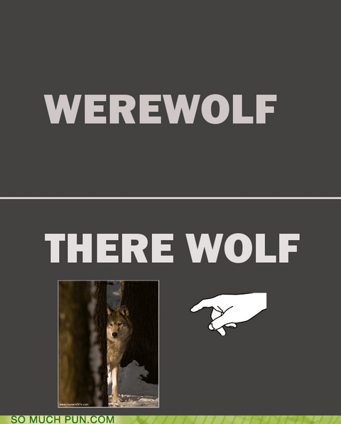 Hall of Fame homophone literalism lycanthrope lycanthropy prefix there werewolf where - 6061400320