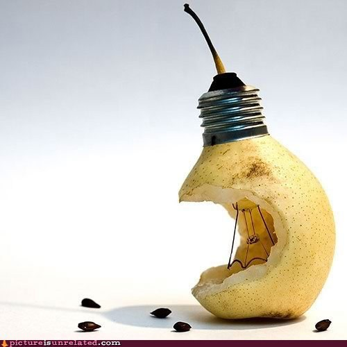 lightbulb,pear,wtf