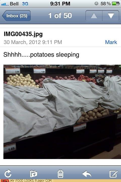 blanket,display,potatoes,sleeping,store