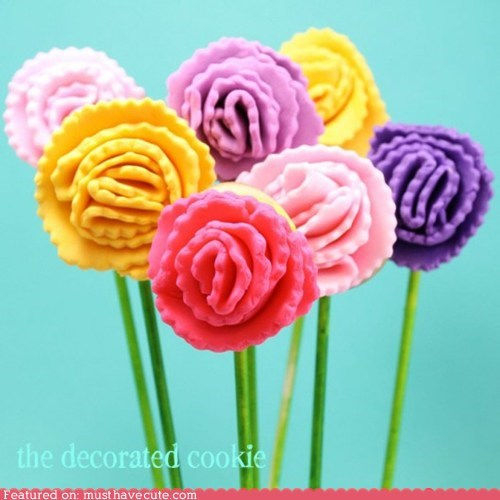 carnations cookies epicute flowers sticks - 6061783296