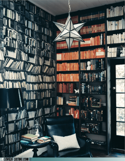 bookcase,penguin,shelves,wallpaper