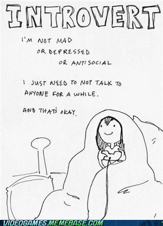 anti social,gamers,introvert,stories,the internets,video games