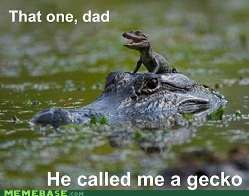 alligator gecko GEICO Memes - 6062001152