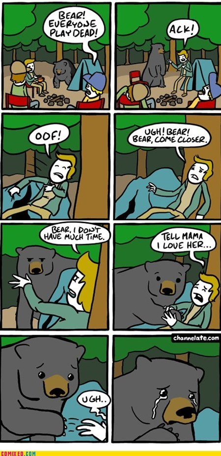 bears best of week camping play dead the internets