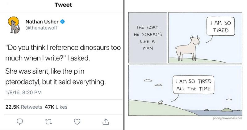 funny memes and comics