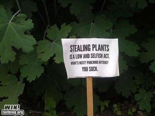 park sign stealing theft warning - 6062455552