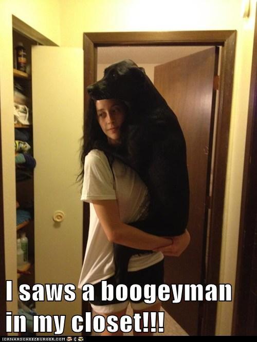boogeyman,dogs,labrador