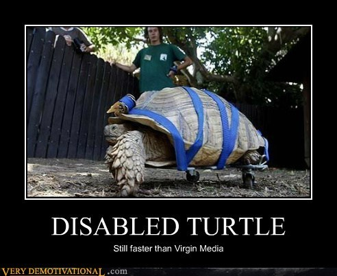 disabled,hilarious,turtle,virgin media
