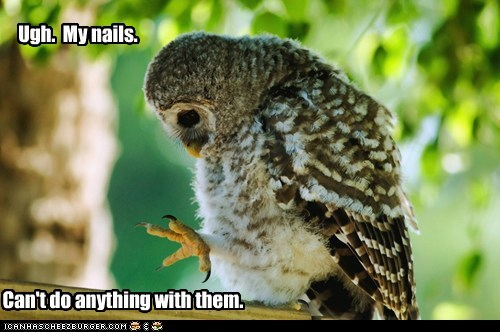 beauty,frustrated,nails,owls,Sad,ugh