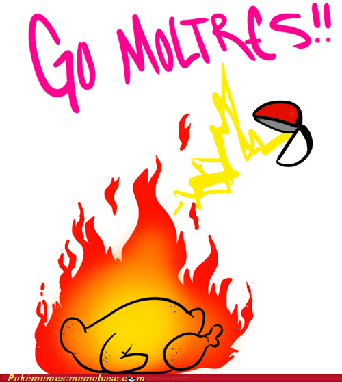 chicken cooked dumb moltres the internets yum - 6064627200