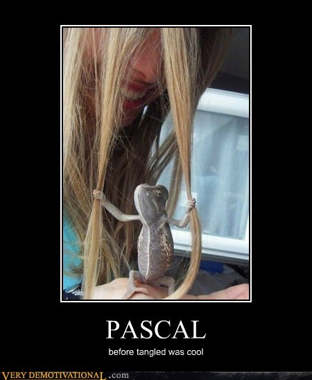 hair hilarious lizard pascal tangled