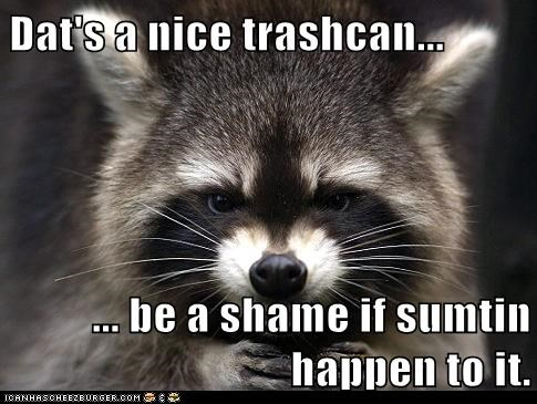 best of the week,Hall of Fame,insurance,mafia,raccoon,shame,threat,trash can