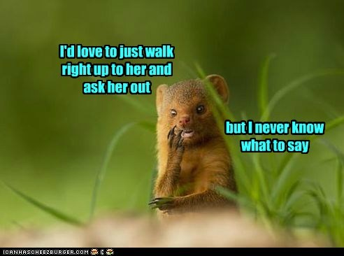ask her hout,destiny,love,mongoose,nervous,thinking