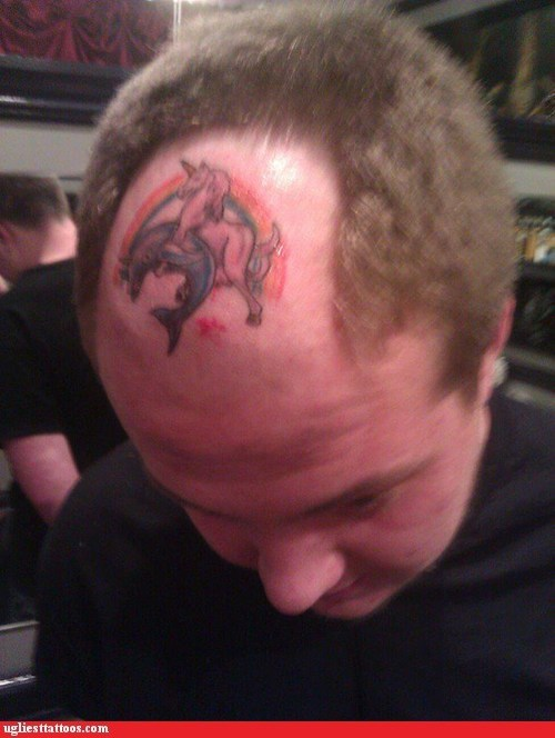 dolphin forehead tattoo Hall of Fame humping rainbow unicorn